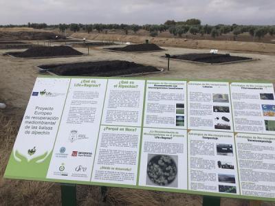 Imagen de la zona de BRS del proyecto